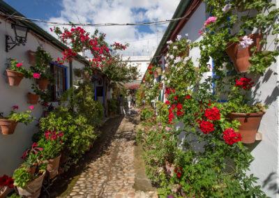 RUTA 2 Calle Marroquíes 6 9